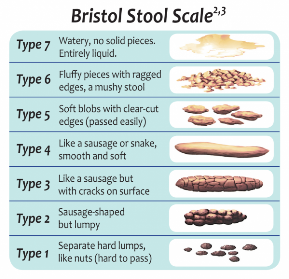 Bristol-Stool-Scale